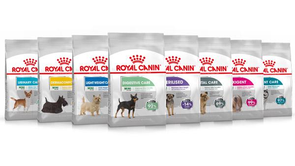 Perrotón 2020 / Premio Royal Canin al Amo y Perro Más en forma
