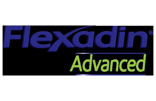 Flexadin Advanced se apunta a Perrotón Madrid 2021 para celebrar con nosotros nuestro 10º Aniversario