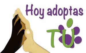 Hoy Adoptas Tú