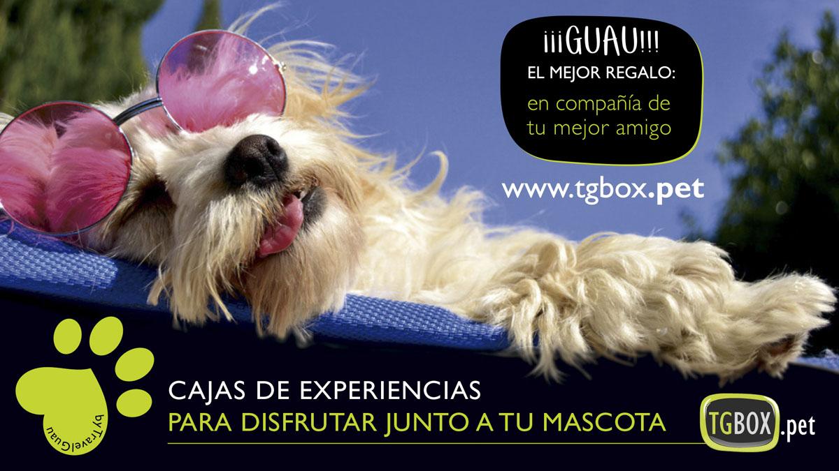 Perrotón 2020 / Premio TravelGuau al Amo y Perro Más Viajeros