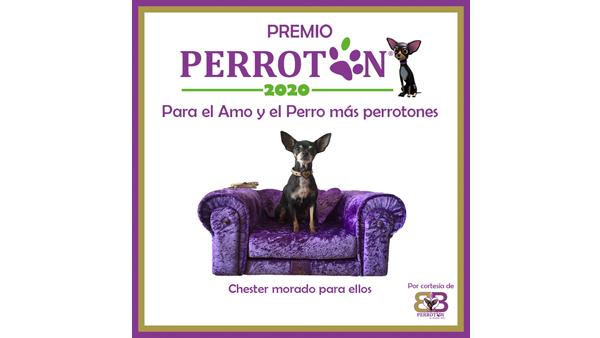 Perrotón 2020 / Premio Perrotón 2020 al Amo y Perro Más Perrotones by BB I Love Perrotón by Alejandra Botto