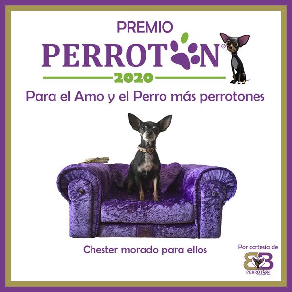 Premio Perrotón 2020