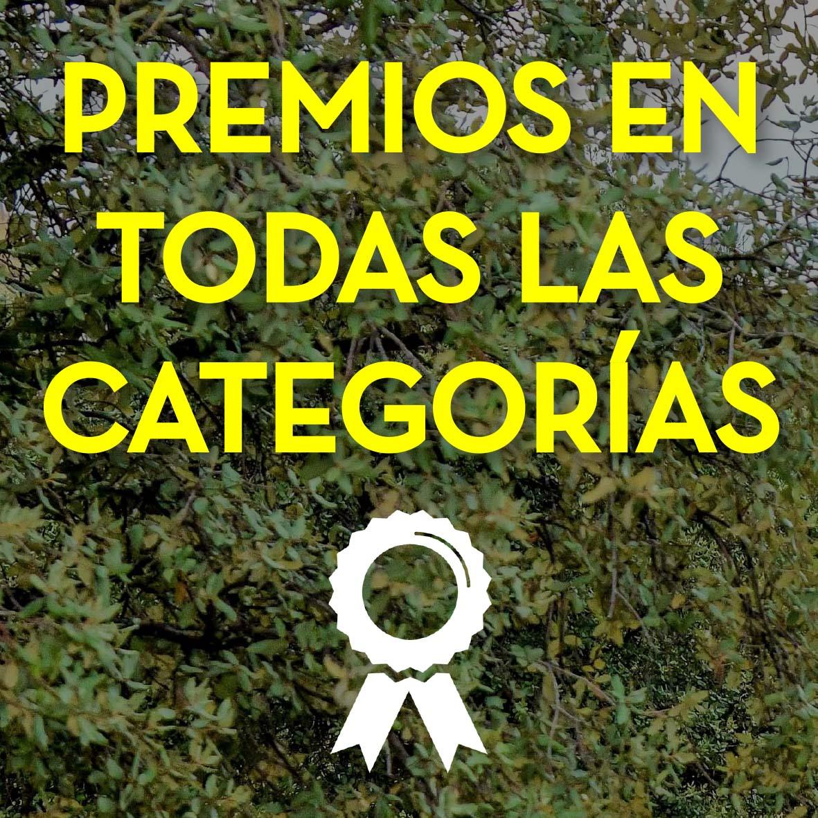 Premios en todas las categorías